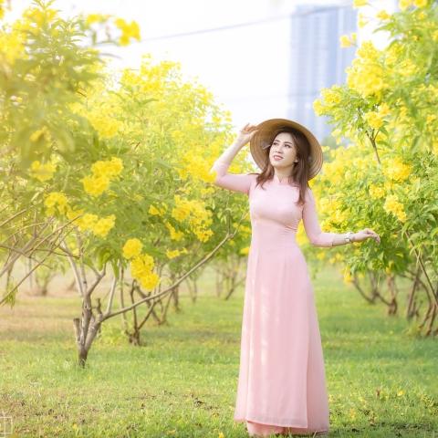 hình áo dài với hoa Hoàng Yến vàng rực
